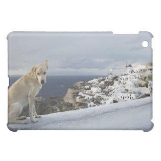 6-Nov iPad Mini Covers
