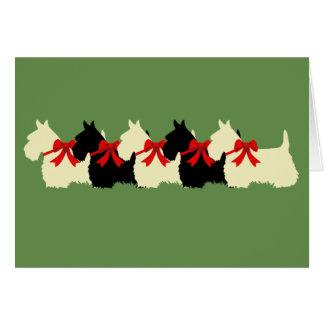 6 Scottish Terrier black/wheaten, bow / blank Card