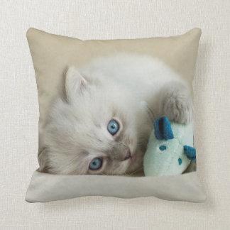 6 week old Ragdoll kitten Throw Pillow