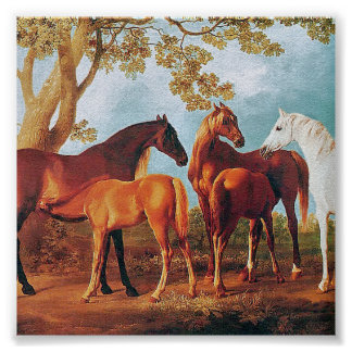 6a   Mares and Foals Poster