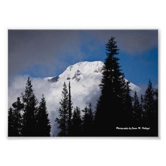 """7"""" x 5"""" Mount Hood, Oregon Photo"""