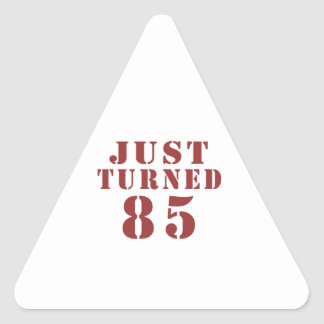 85 Just Turned Birthday Triangle Sticker