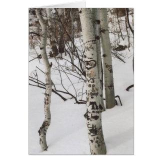 87. Tree Graffit & Pristine Snow, Colorado Card