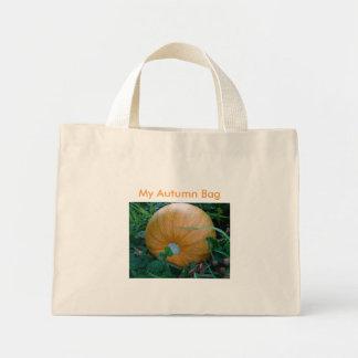 8 11 2009 107, Orange Pumpkin, My Autumn Bag