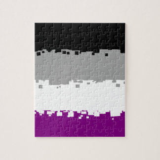 8 Bit Asexual Pride Flag Puzzle