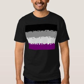 8 Bit Asexual Pride Flag Shirt