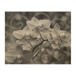 "8""x10"" Orchid flowers wood wall art"