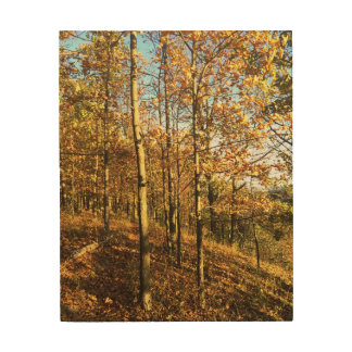 "8"" x 10"" Autumn Wood Wall Art Wood Canvases"