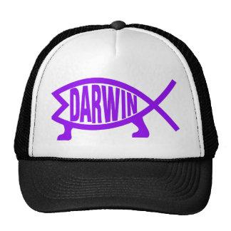 8darwin-160555 cap