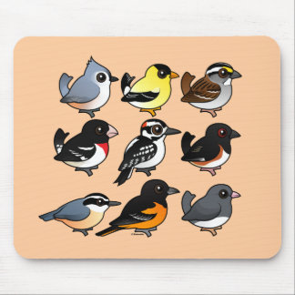 9 Northeast USA Backyard Birds Mouse Pad