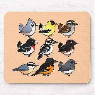 9 Northeast USA Backyard Birds Mouse Pad