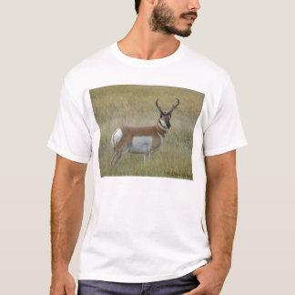 A0001 Pronghorn Antelope Buck T-Shirt