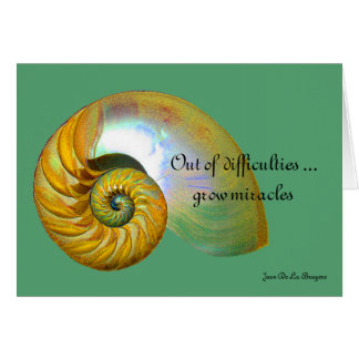 A09 Nautilus Shell - Inspirational Quote Card 2
