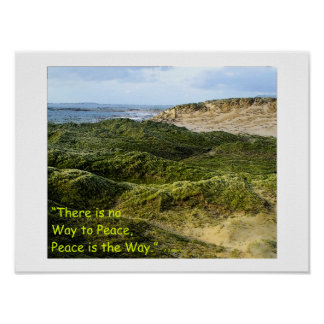 """A10 """"Peace is the Way"""" Poster"""