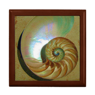 A11b Chambered Nautilus Shell Tiled Box Large Square Gift Box