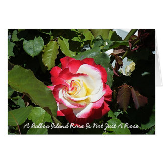 A Balboa Island Rose Is As Unique As You Card