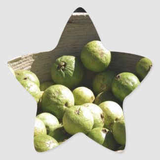 A basket full of guavas star sticker