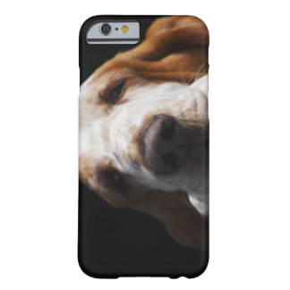 A Basset Hound resting his head Barely There iPhone 6 Case