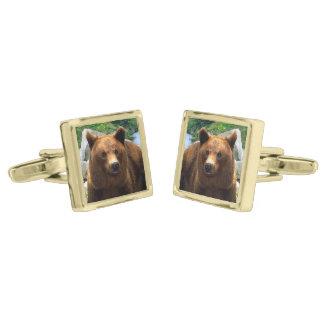 """A Bear Named Buddy"" Cuff Links Gold Finish Cufflinks"