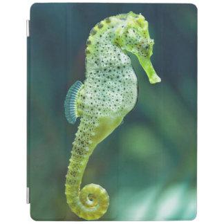 A Beautiful Knysna Seahorse iPad Cover