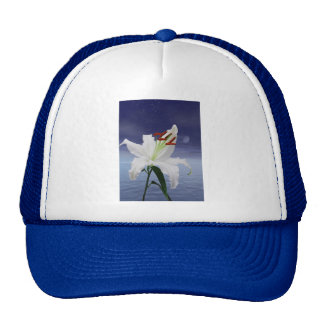 A beautiful lily in the moonlight cap