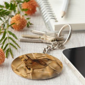 A Beautiful Marsh Wren in--Where Else?--the Marsh Basic Round Button Key Ring