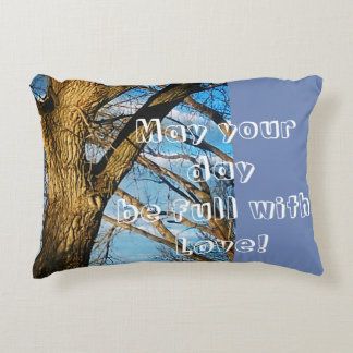 A beautiful Pillow