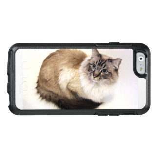 A beautiful Seal Lynx Point Ragdoll cat OtterBox iPhone 6/6s Case