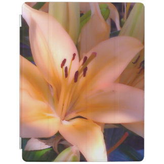 A - Beautiful Shaded Orange Lily iPad Cover
