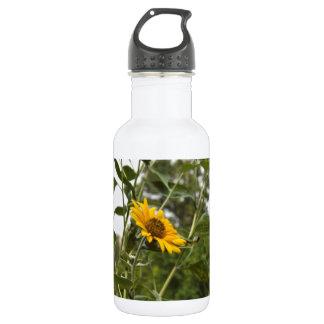 A beautiful sunflower rising high 532 ml water bottle