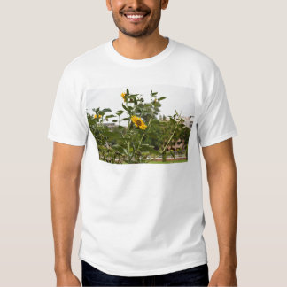 A beautiful sunflower rising high tshirts