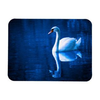 A Beautiful Swan Rectangular Magnet