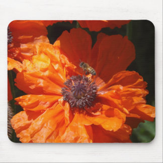 A Bee And A Poppy Mouse Pad