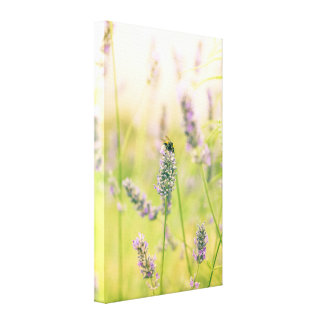 A bee on the lavender canvas print