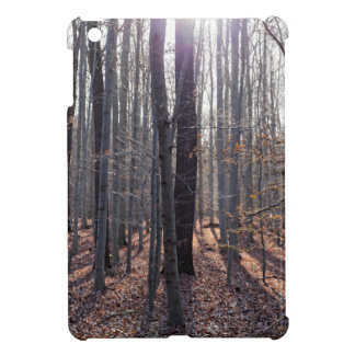 A beech forest in fall. case for the iPad mini
