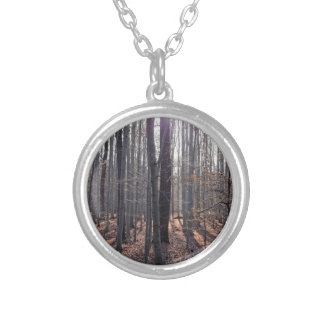 A beech forest in fall. silver plated necklace