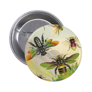 A Bevy of Beautiful Bees Button