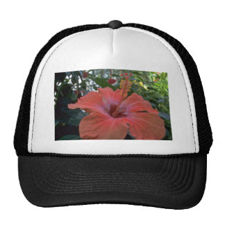 A Big Pink Flower Mesh Hat