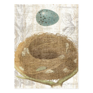 A Bird s Nest with a Decorative Egg Post Cards