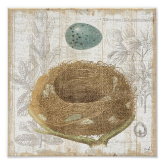 A Bird s Nest with a Decorative Egg Posters