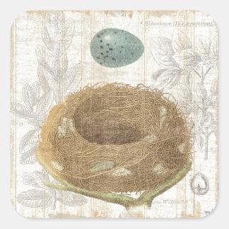 A Bird s Nest with a Decorative Egg Sticker