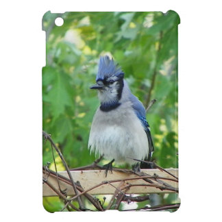 A birds eye day case for the iPad mini