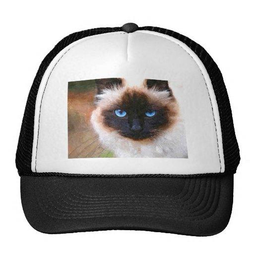 A Birman Cat Hats