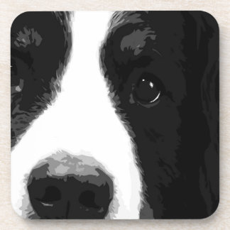A black and white Bernese mountain dog Coaster