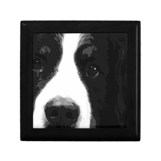 A black and white Bernese mountain dog Gift Box