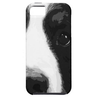 A black and white Bernese mountain dog iPhone 5 Cover