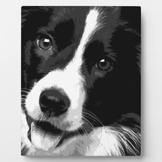 A black and white Border collie Plaque