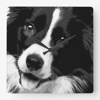 A black and white Border collie Square Wall Clock