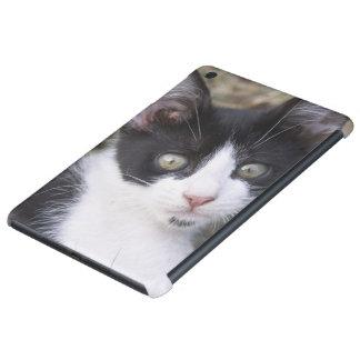 A black and white cat kitten in the garden. iPad mini retina case