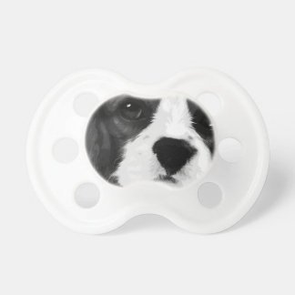 A black and white Cavalier king charles spaniel Dummy